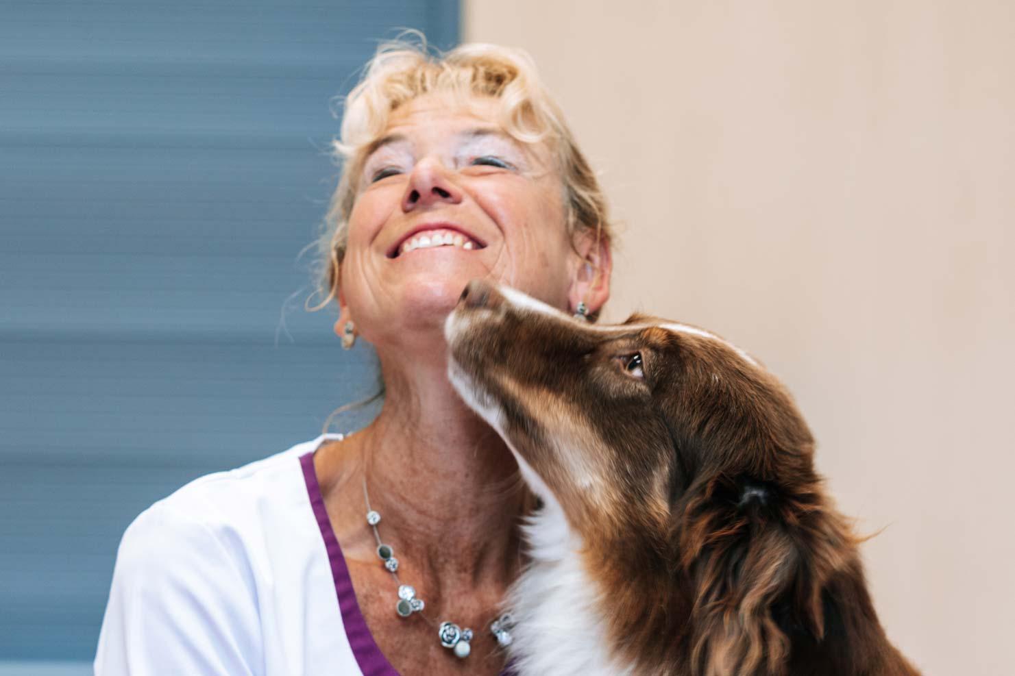 Erstklassige Tiermedizin - Tierarzt am Paulshof