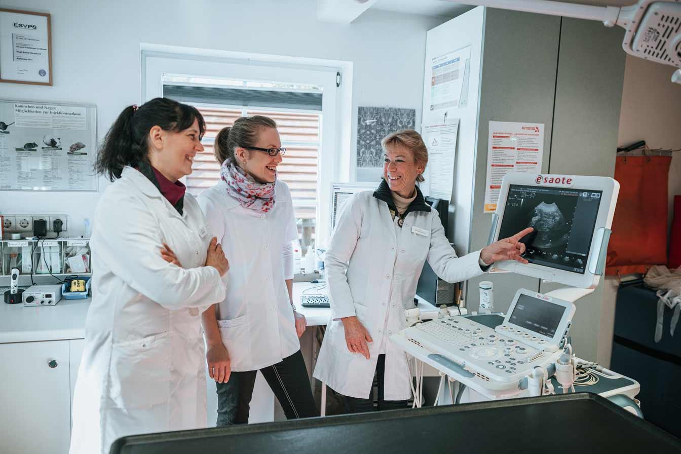 Ultraschall - Tierarzt am Paulshof