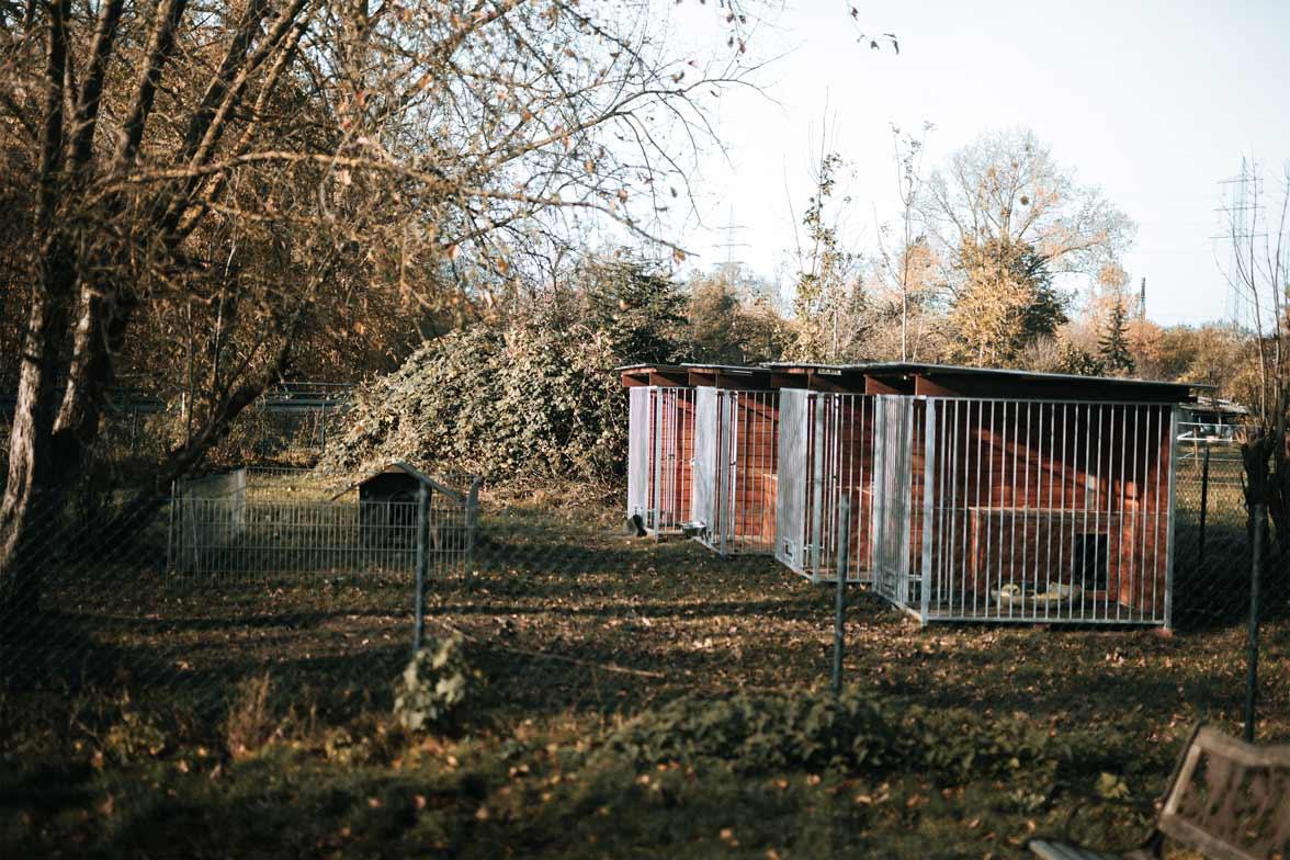 Zwinger im Garten - Tierarzt am Paulshof